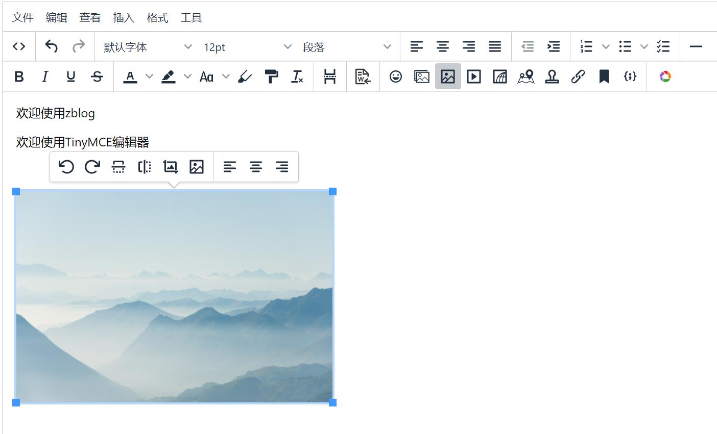 Zblog TinyMCE 富文本编辑器,zblog,第1张