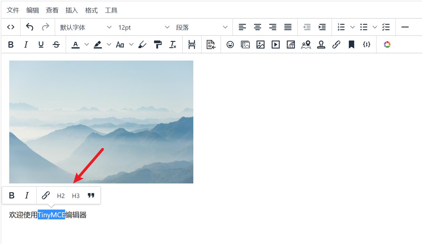 Zblog TinyMCE 富文本编辑器,zblog,第2张